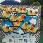 1歳11ヶ月と掛川旅行に行ってきました:掛川花鳥園編