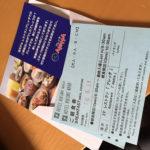 撮影メインの宮古島へ行ってきました:貝殻拾い編