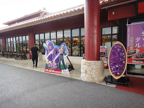 okinawa1109_024