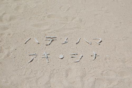1209okinawa_128