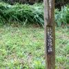 氷取沢市民の森に行って来ました2010春。