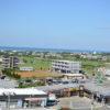 晴れ晴れの宮古島に行ってきました:伊良部島のまもる君編